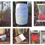 Woodland Effect Louise Shaw 2019